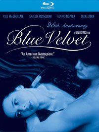 bluevelvetbd