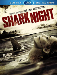 sharknightbd