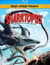 sharktopusbd
