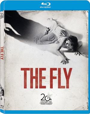 theflybd