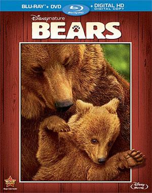 bearsbd