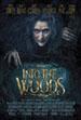 intothewoods_sm