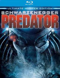 predatorbd